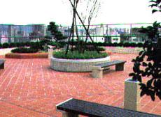 屋 上(庭)